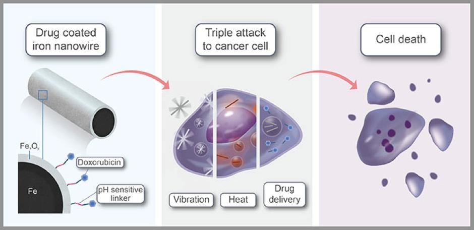 iron nanowires