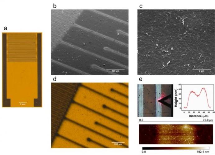graphene sensors