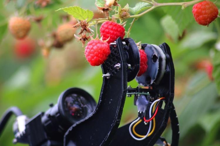Fieldwork Robotics
