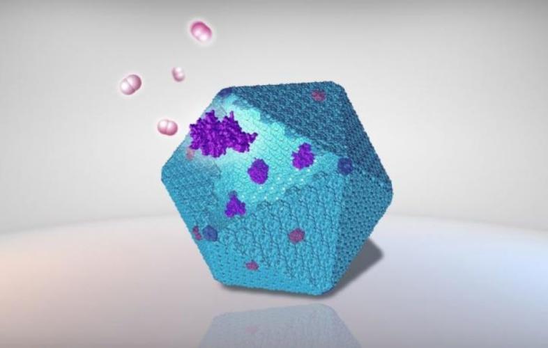 Nanobioreactor