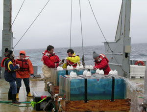 Senior Research Scientist William Cochlan (second from right) and colleagues conduct iron-enrichment experiments using deckboard incubators aboard the research vessel Thomas G. Thompson in the subarctic northeast Pacific Ocean. Credit: William Cochlan