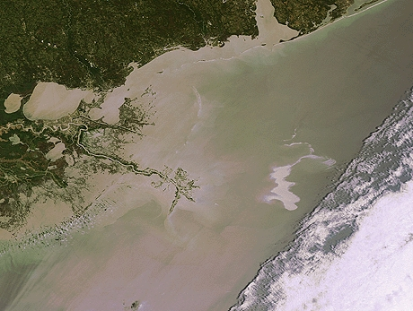 Envisat optical image of the oil spill (visible as a white whirl on the right) in the Gulf of Mexico. The image was acquired from the Medium Resolution Imaging Spectrometer (MERIS) on 25 April 2010 at 16:28 UTC. Credit: ESA