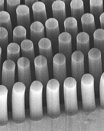 These posts, made of carbon nanotubes, can trap cancer cells and other tiny objects as they flow through a microfluidic device.