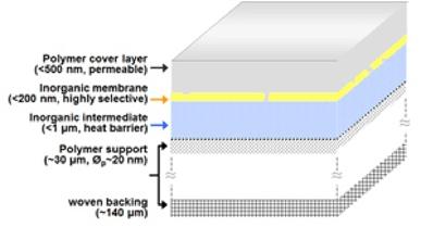 /s/o/n/TE_membrane.jpg
