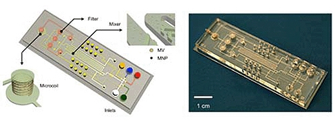Microfluidic NMR system for the detection of microvesicles (MV) in blood. Labelling with magnetic nanoparticles (MNP) enables detection with a miniature NMR coil