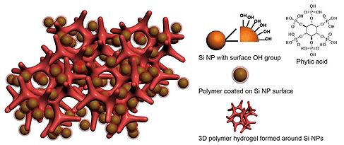This is an illustration of a new battery electrode made from a composite of hydrogel and silicon nanoparticles (Si NP). Each Si NP is encapsulated in a conductive polymer surface coating and connected to a three-dimensional hydrogel framework