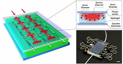 The design of NC State's regenerative solar cell mimics nature by use of microfluidic channels