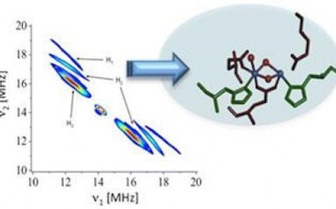"""The new spectroscopy method, """"2D HYSCORE,"""" is able to capture the reactions that split water and hydrogen peroxide in metal-containing proteins or metallo-enzymes in nature"""