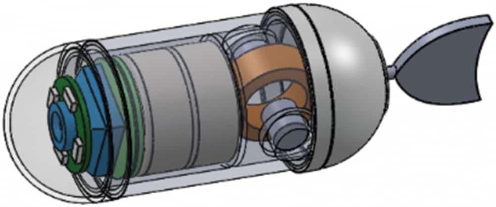 Tadpole endoscope1