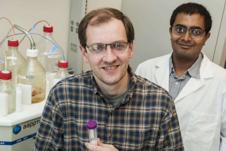 Rice University researchers Jeffrey Hartgerink, left, and Vivek Kumar led research that combines a derivative of snake venom with their nanofibre hydrogel to help encourage blood clotting.