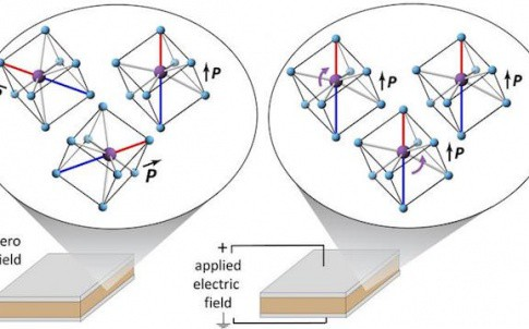 Researchers have measured how the atoms within electrically insulating solids reorient due to an applied electric field. Shown here for Na1/2Bi1/2TiO3, bismuth ions (purple) align along the electric field direction relative to their surrounding titanium i