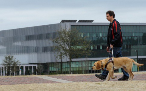 Sean Mealin and Simba, using a traditional guide dog harness and handle.
