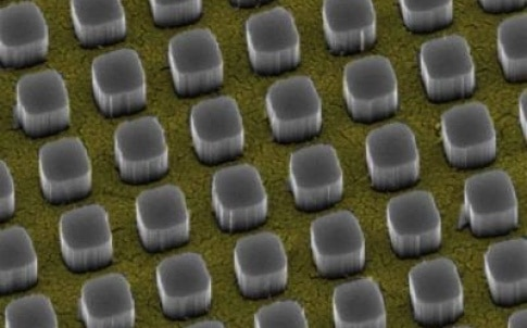 Silicon pillars emerge from nanosize holes in a thin gold film. The pillars funnel 97 percent of incoming light to a silicon substrate, a technology that could significantly boost the performance of conventional solar cells.