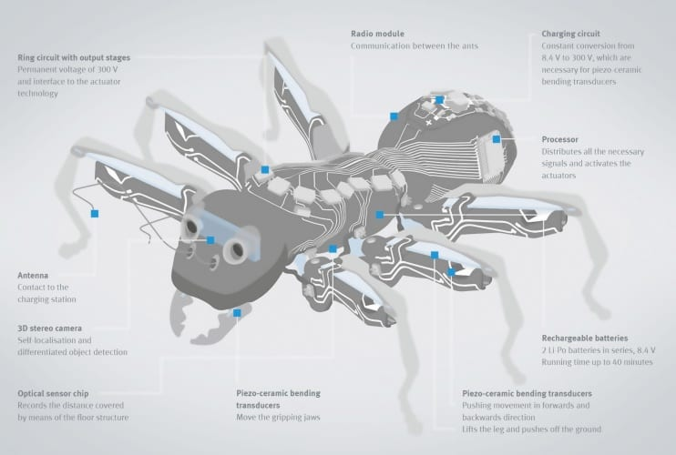 The bionic ant project attempted to investigate collaborative approaches to intelligent systems
