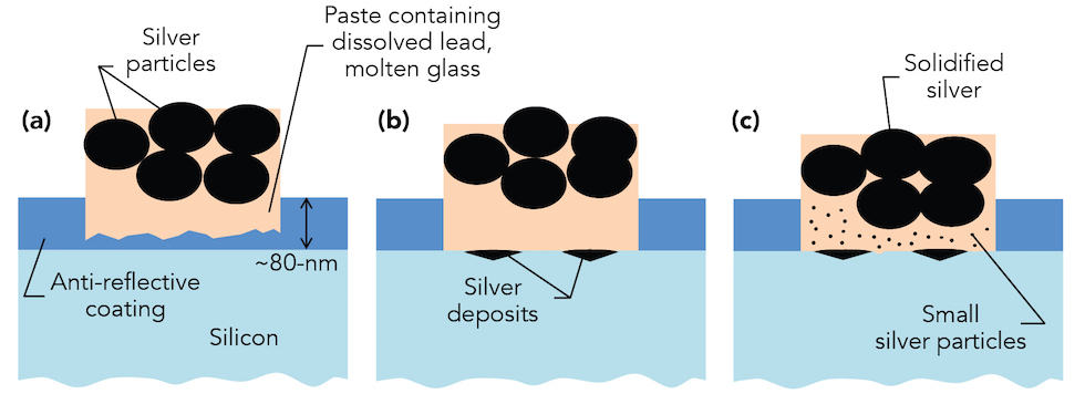 This illustration shows how silver contacts form on silicon solar cells