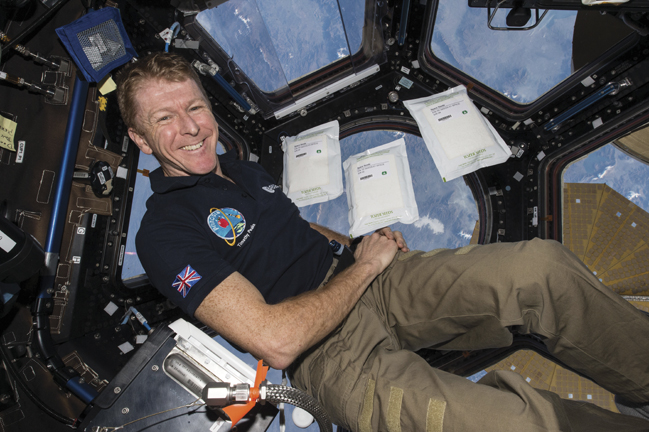 Major Tim Peake's time on the International Space Station is almost up