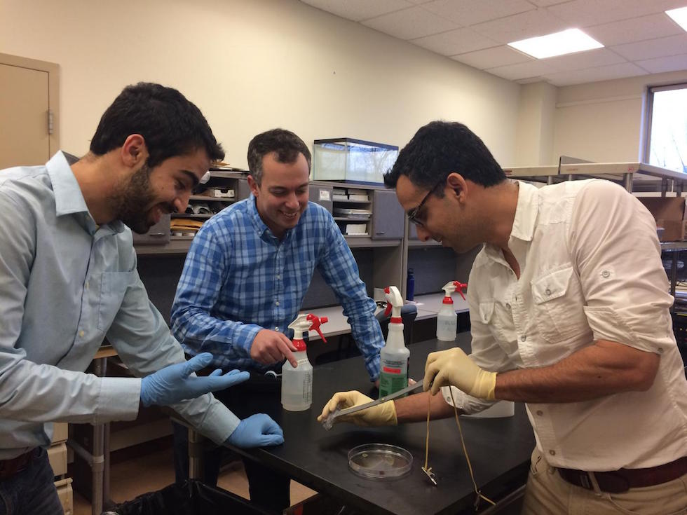 Navid Kazem (left), Malen (centre), and Majidi (right) demonstrate the elasticity of 'thubber'