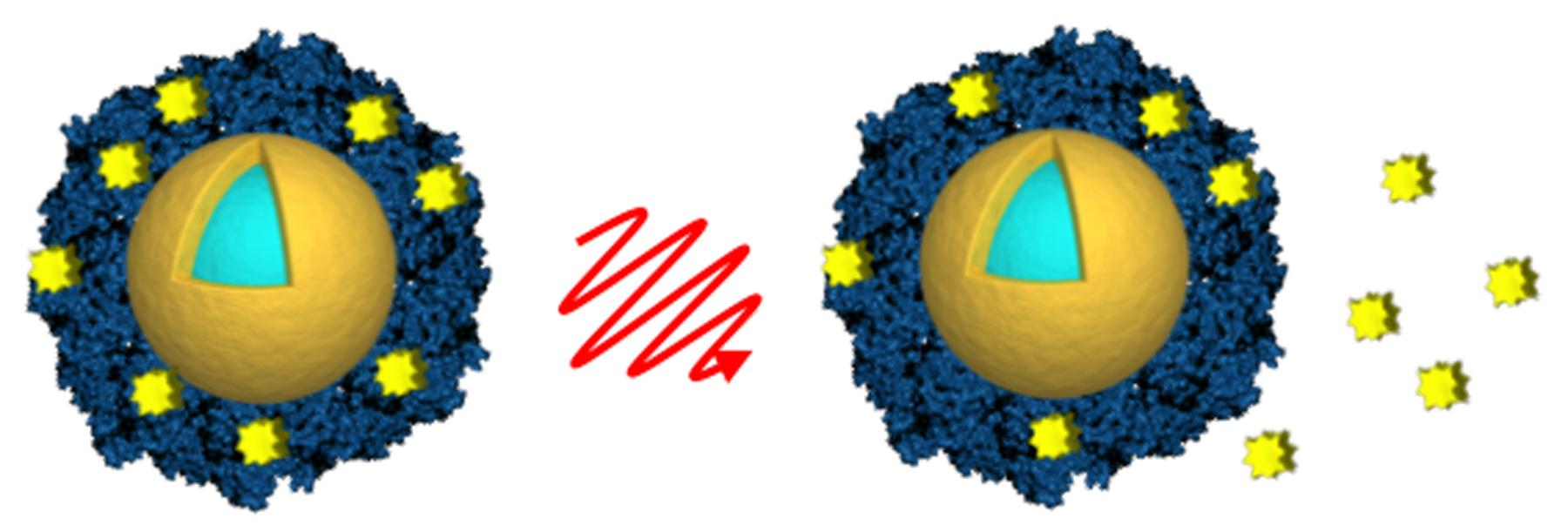 nanoshells
