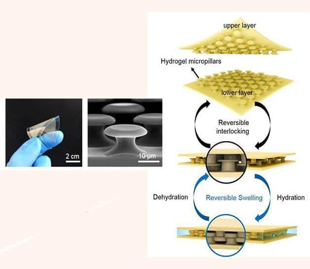 underwater adhesives