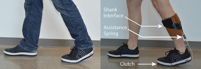 ankle exoskeleton