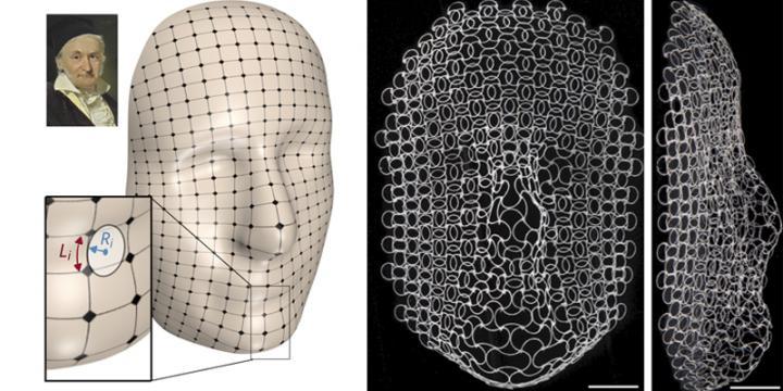 shape shifting lattices